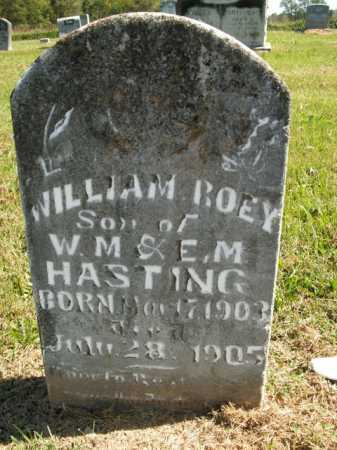 HASTING, WILLIAM ROEY - Boone County, Arkansas | WILLIAM ROEY HASTING - Arkansas Gravestone Photos