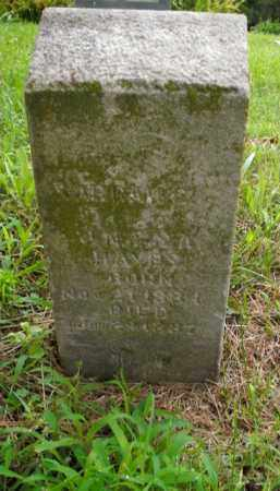 HAYES, SARRAH C. - Boone County, Arkansas | SARRAH C. HAYES - Arkansas Gravestone Photos