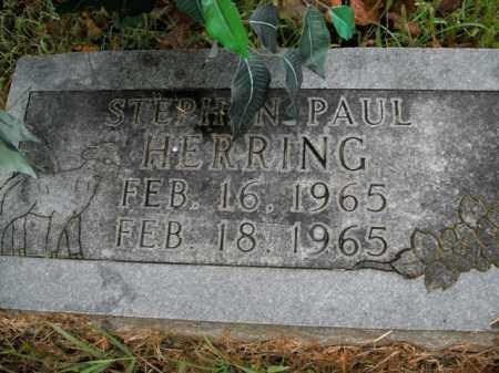 HERRING, STEPHEN PAUL - Boone County, Arkansas   STEPHEN PAUL HERRING - Arkansas Gravestone Photos