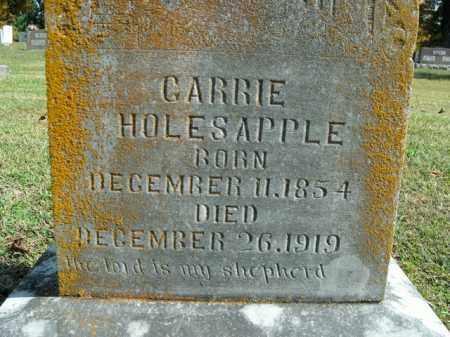 HOLESAPPLE, CARRIE - Boone County, Arkansas   CARRIE HOLESAPPLE - Arkansas Gravestone Photos