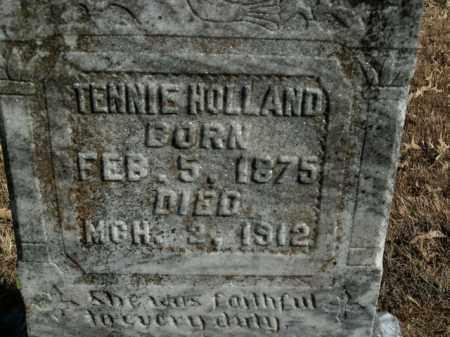WILLIAMS HOLLAND, TENNIE - Boone County, Arkansas | TENNIE WILLIAMS HOLLAND - Arkansas Gravestone Photos
