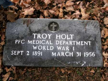 HOLT  (VETERAN WWI), TROY - Boone County, Arkansas | TROY HOLT  (VETERAN WWI) - Arkansas Gravestone Photos