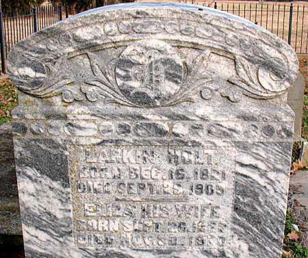 HOLT, JOHN LARKIN - Boone County, Arkansas   JOHN LARKIN HOLT - Arkansas Gravestone Photos