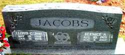 WATERS JACOBS, BERNICE ALMEDA - Boone County, Arkansas | BERNICE ALMEDA WATERS JACOBS - Arkansas Gravestone Photos