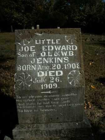 JENKINS, JOE EDWARD - Boone County, Arkansas | JOE EDWARD JENKINS - Arkansas Gravestone Photos