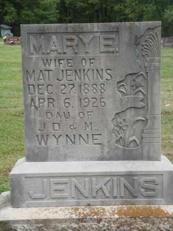 WYNNE JENKINS, MARY E. - Boone County, Arkansas | MARY E. WYNNE JENKINS - Arkansas Gravestone Photos