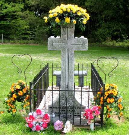 JOHNSON, HEATHER ELIZABETH - Boone County, Arkansas | HEATHER ELIZABETH JOHNSON - Arkansas Gravestone Photos