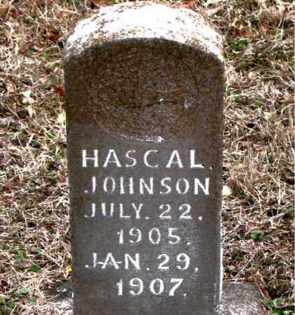 JOHNSON, HASCAL - Boone County, Arkansas | HASCAL JOHNSON - Arkansas Gravestone Photos