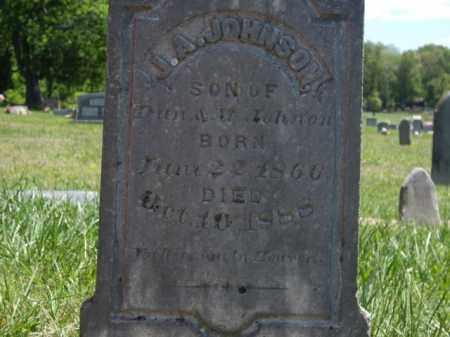 JOHNSON, J.A. - Boone County, Arkansas | J.A. JOHNSON - Arkansas Gravestone Photos