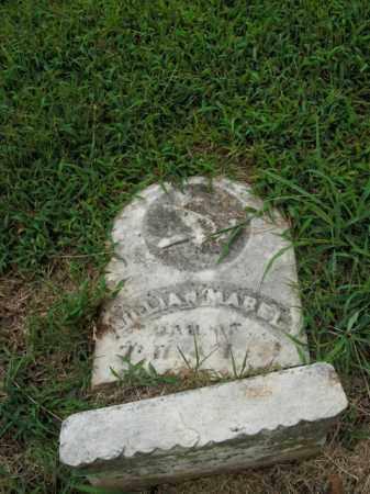 JOHNSON, LILLIAN MABEL - Boone County, Arkansas | LILLIAN MABEL JOHNSON - Arkansas Gravestone Photos