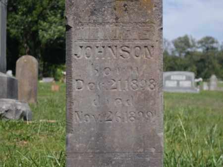 JOHNSON, MINNIE E. - Boone County, Arkansas | MINNIE E. JOHNSON - Arkansas Gravestone Photos