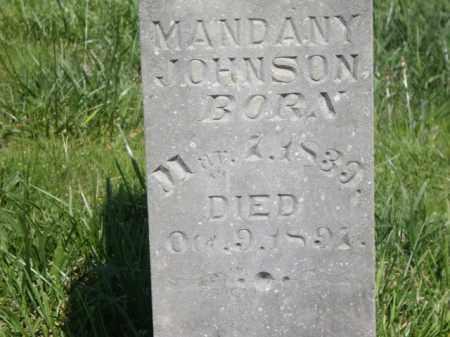 JOHNSON, MANDANY - Boone County, Arkansas | MANDANY JOHNSON - Arkansas Gravestone Photos