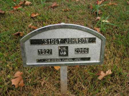 JOHNSON, SIGFRIED V (SIGGY) - Boone County, Arkansas | SIGFRIED V (SIGGY) JOHNSON - Arkansas Gravestone Photos