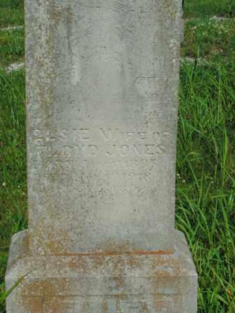 JONES, ELSIE - Boone County, Arkansas   ELSIE JONES - Arkansas Gravestone Photos
