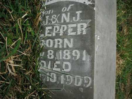 KLEPPER, DAVID TROY - Boone County, Arkansas   DAVID TROY KLEPPER - Arkansas Gravestone Photos