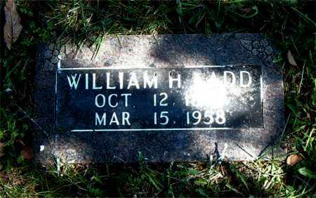 LADD, WILLIAM H. - Boone County, Arkansas | WILLIAM H. LADD - Arkansas Gravestone Photos