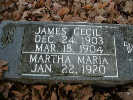 LAIR, MARTHA MARIA - Boone County, Arkansas | MARTHA MARIA LAIR - Arkansas Gravestone Photos