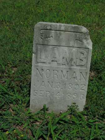 LAMB, NORMAN - Boone County, Arkansas | NORMAN LAMB - Arkansas Gravestone Photos
