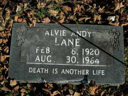 LANE, ALVIE ANDY - Boone County, Arkansas | ALVIE ANDY LANE - Arkansas Gravestone Photos
