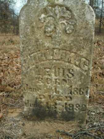 LEWIS, WILLIAM C. - Boone County, Arkansas | WILLIAM C. LEWIS - Arkansas Gravestone Photos