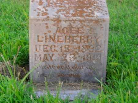LINEBERRY, AGEE - Boone County, Arkansas   AGEE LINEBERRY - Arkansas Gravestone Photos