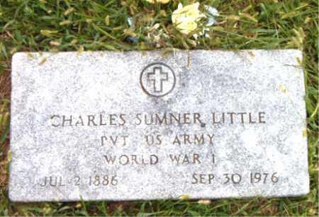 LITTLE  (VETERAN WWI), CHARLES SUMNER - Boone County, Arkansas | CHARLES SUMNER LITTLE  (VETERAN WWI) - Arkansas Gravestone Photos