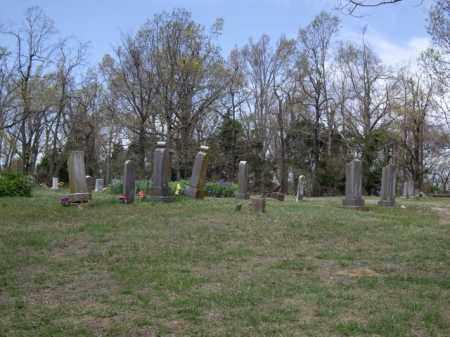 *LOBACK OVERVIEW, . - Boone County, Arkansas | . *LOBACK OVERVIEW - Arkansas Gravestone Photos