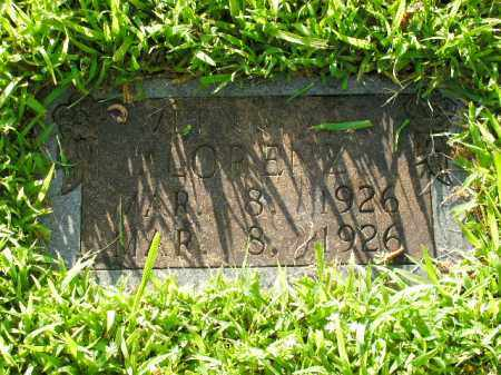 LORENZ, VERNA MAE - Boone County, Arkansas   VERNA MAE LORENZ - Arkansas Gravestone Photos