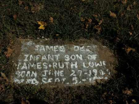 LOWE, JAMES O. - Boone County, Arkansas | JAMES O. LOWE - Arkansas Gravestone Photos