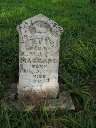 MAGGARD, EFFIE - Boone County, Arkansas   EFFIE MAGGARD - Arkansas Gravestone Photos