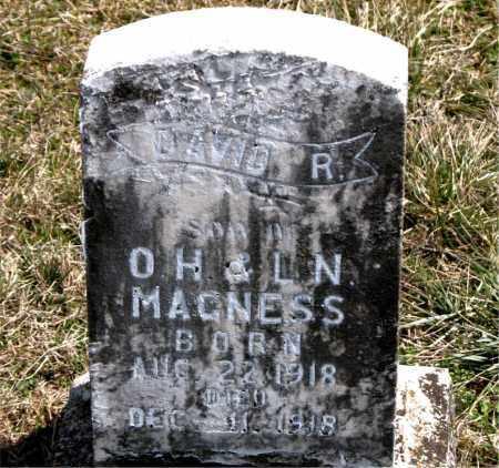 MAGNESS, DAVID  R. - Boone County, Arkansas | DAVID  R. MAGNESS - Arkansas Gravestone Photos