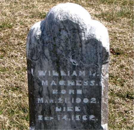 MAGNESS, WILLIAM - Boone County, Arkansas   WILLIAM MAGNESS - Arkansas Gravestone Photos
