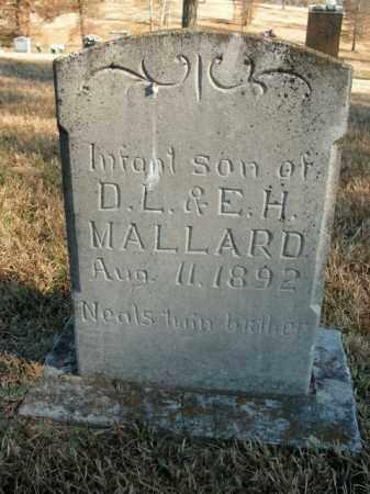MALLARD, INFANT SON - Boone County, Arkansas | INFANT SON MALLARD - Arkansas Gravestone Photos