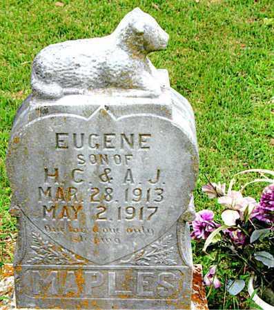 MAPLES, EUGENE - Boone County, Arkansas | EUGENE MAPLES - Arkansas Gravestone Photos