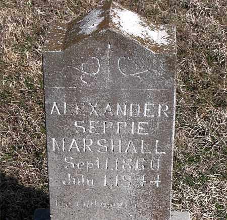 MARSHALL, ALEXANDER SEPPIE - Boone County, Arkansas | ALEXANDER SEPPIE MARSHALL - Arkansas Gravestone Photos