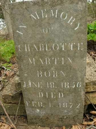 MARTIN, CHARLOTTE - Boone County, Arkansas | CHARLOTTE MARTIN - Arkansas Gravestone Photos