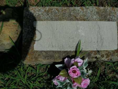 MARTIN, EVA ROSETTA - Boone County, Arkansas   EVA ROSETTA MARTIN - Arkansas Gravestone Photos