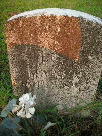 MARTIN, JESSIE - Boone County, Arkansas | JESSIE MARTIN - Arkansas Gravestone Photos
