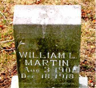 MARTIN, WILLIAM  L. - Boone County, Arkansas | WILLIAM  L. MARTIN - Arkansas Gravestone Photos