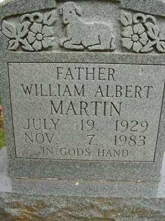 MARTIN, WILLIAM ALBERT - Boone County, Arkansas | WILLIAM ALBERT MARTIN - Arkansas Gravestone Photos