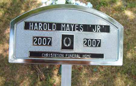 MAYES, JR, HAROLD - Boone County, Arkansas | HAROLD MAYES, JR - Arkansas Gravestone Photos