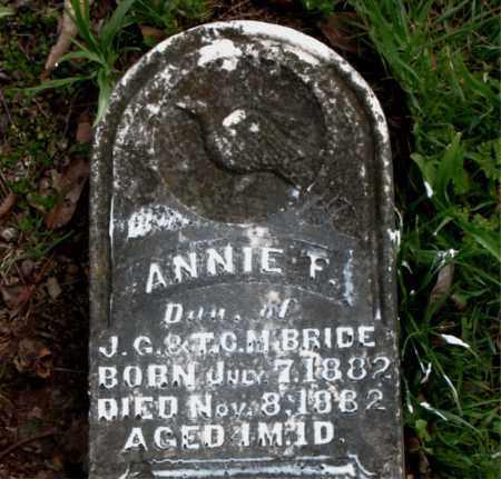 MCBRIDE, ANNIE  F. - Boone County, Arkansas | ANNIE  F. MCBRIDE - Arkansas Gravestone Photos
