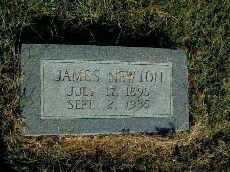 MCGRAW, JAMES NEWTON - Boone County, Arkansas | JAMES NEWTON MCGRAW - Arkansas Gravestone Photos