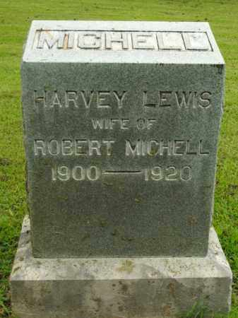 LEWIS MICHELL, HARVEY - Boone County, Arkansas | HARVEY LEWIS MICHELL - Arkansas Gravestone Photos