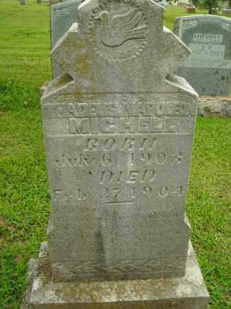 MICHELL, THADEUS NAPOLEON - Boone County, Arkansas | THADEUS NAPOLEON MICHELL - Arkansas Gravestone Photos