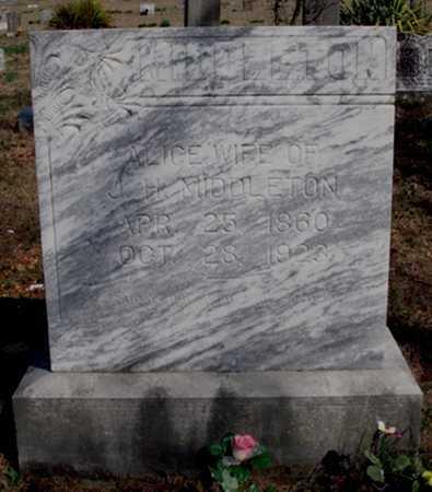 MIDDLETON, ALICE ARMINDA - Boone County, Arkansas | ALICE ARMINDA MIDDLETON - Arkansas Gravestone Photos