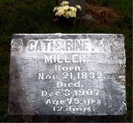 MILLER, CATHERINE - Boone County, Arkansas | CATHERINE MILLER - Arkansas Gravestone Photos
