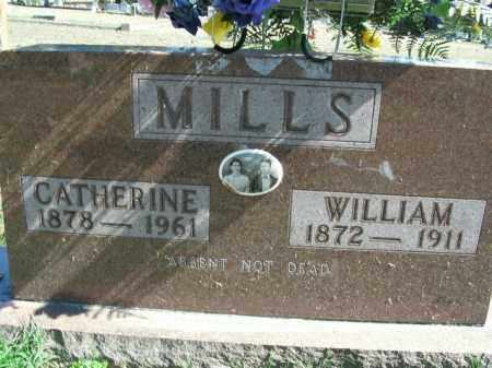 MILLS, TENNESSEE CATHERINE - Boone County, Arkansas | TENNESSEE CATHERINE MILLS - Arkansas Gravestone Photos