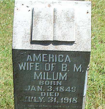 MILUM, AMERICA - Boone County, Arkansas | AMERICA MILUM - Arkansas Gravestone Photos
