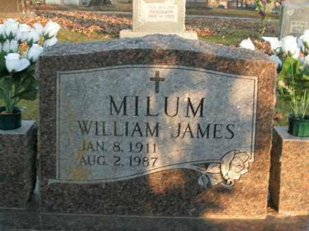 MILUM, WILLIAM JAMES - Boone County, Arkansas | WILLIAM JAMES MILUM - Arkansas Gravestone Photos